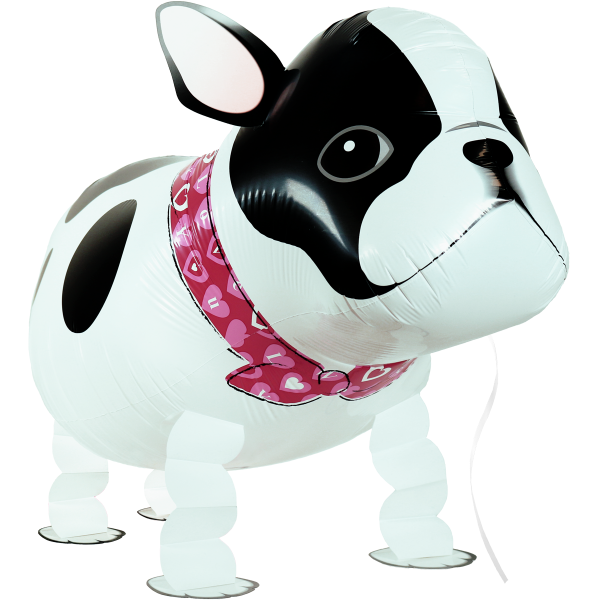 Laufender Ballon - Airwalker Ballon - Bulldogge Hund