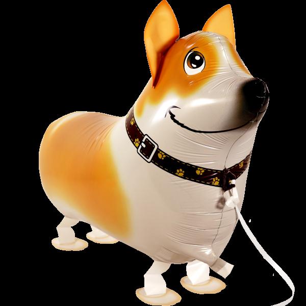 Laufender Ballon - Airwalker Ballon - Jack Russel Hund